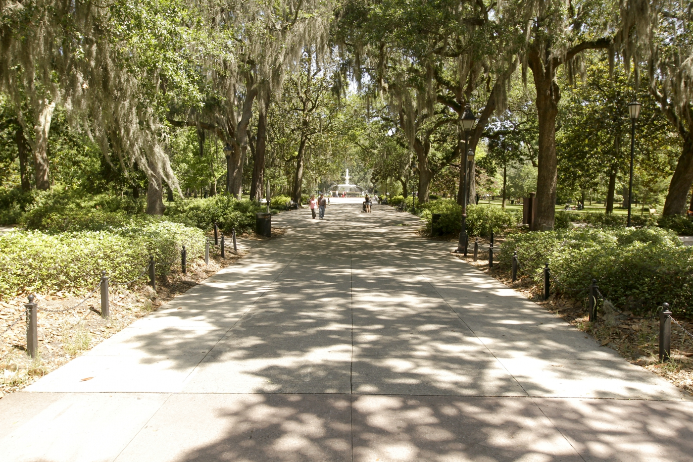 The beautiful Forsyth Park.