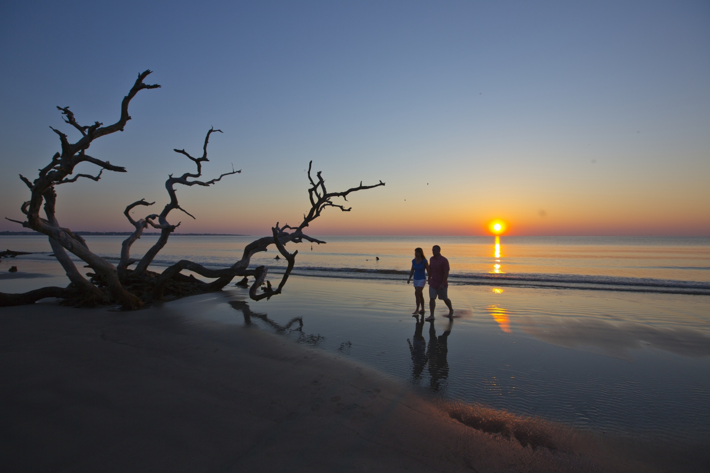 Take a tranquil stroll on Driftwood Beach on Jekyll Island, scattered with knobby and twisted tree trunks made gray by the sun and sea.