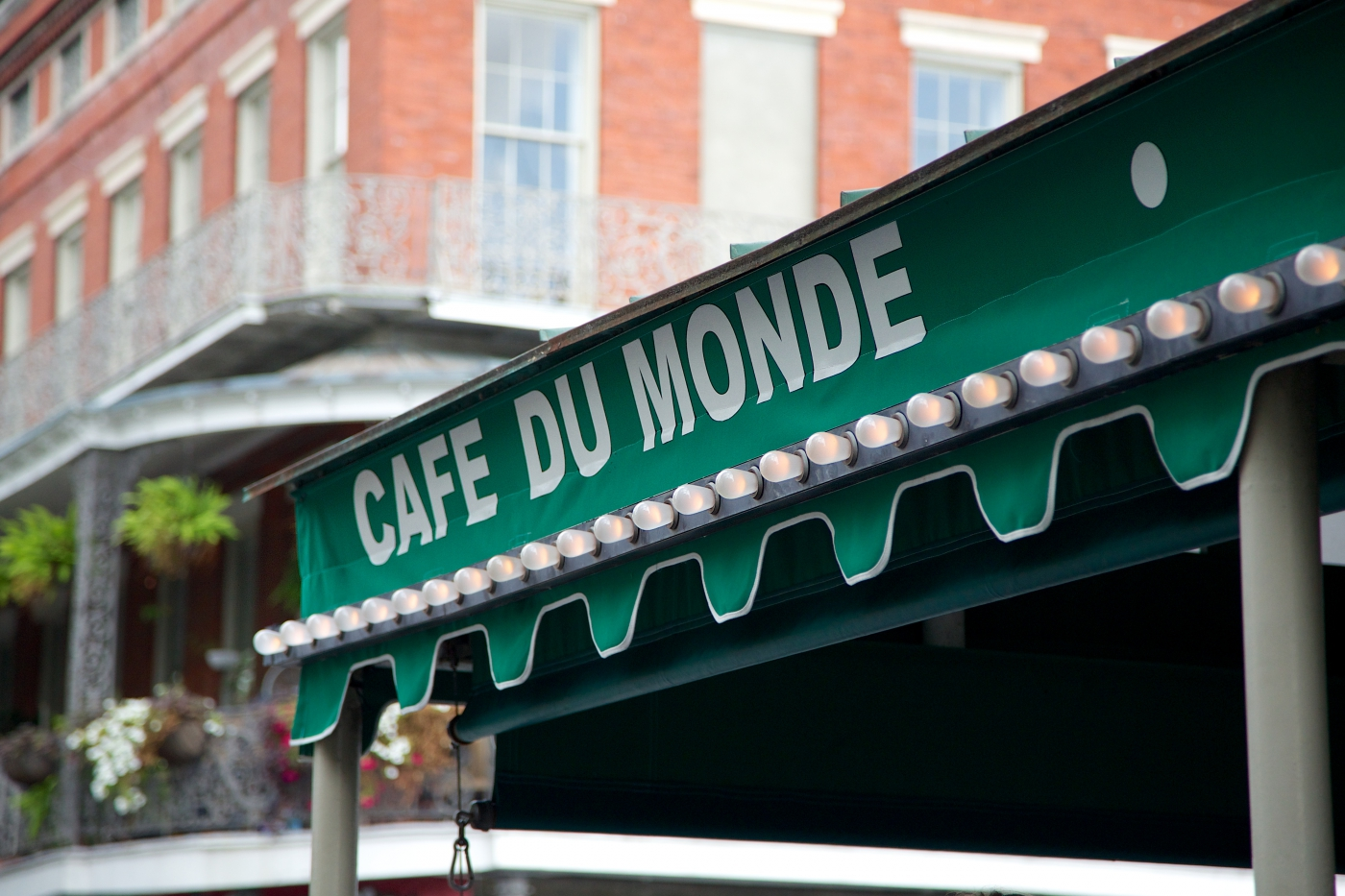 Get a world famous beignet at Cafe Du Monde!