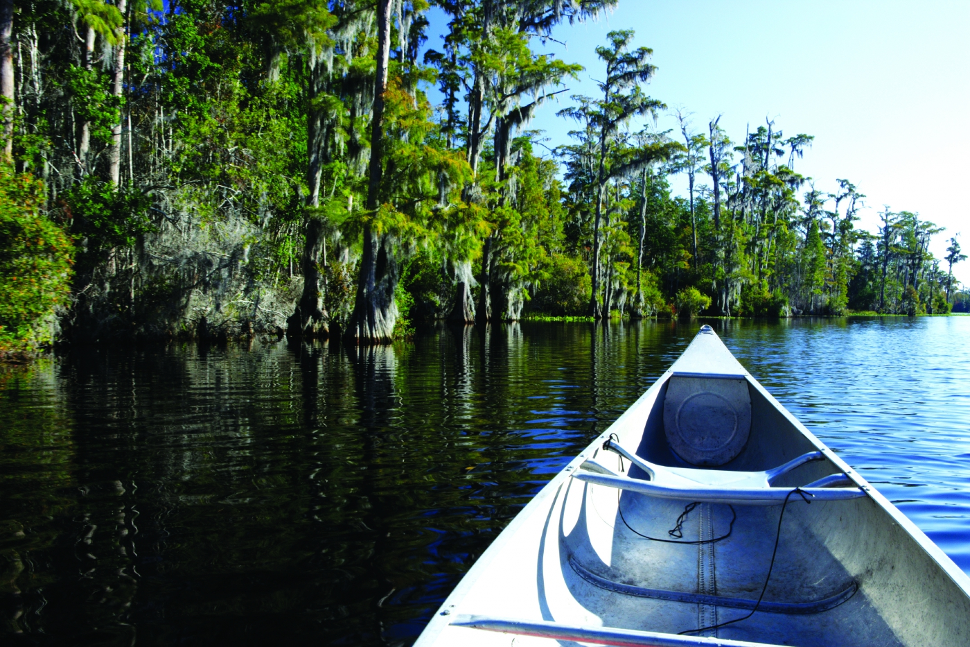 Swamps, marshlands, the ocean. Any water you want, Louisiana has it!