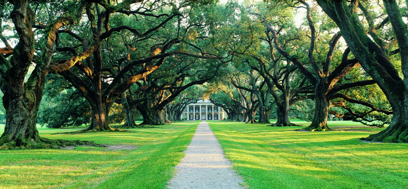 Beautiful Oak Alley Plantation.
