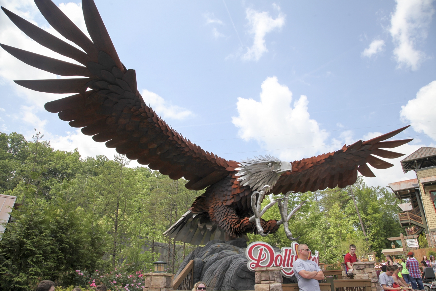 Wild Eagle Roller Coaster at Dollywood.