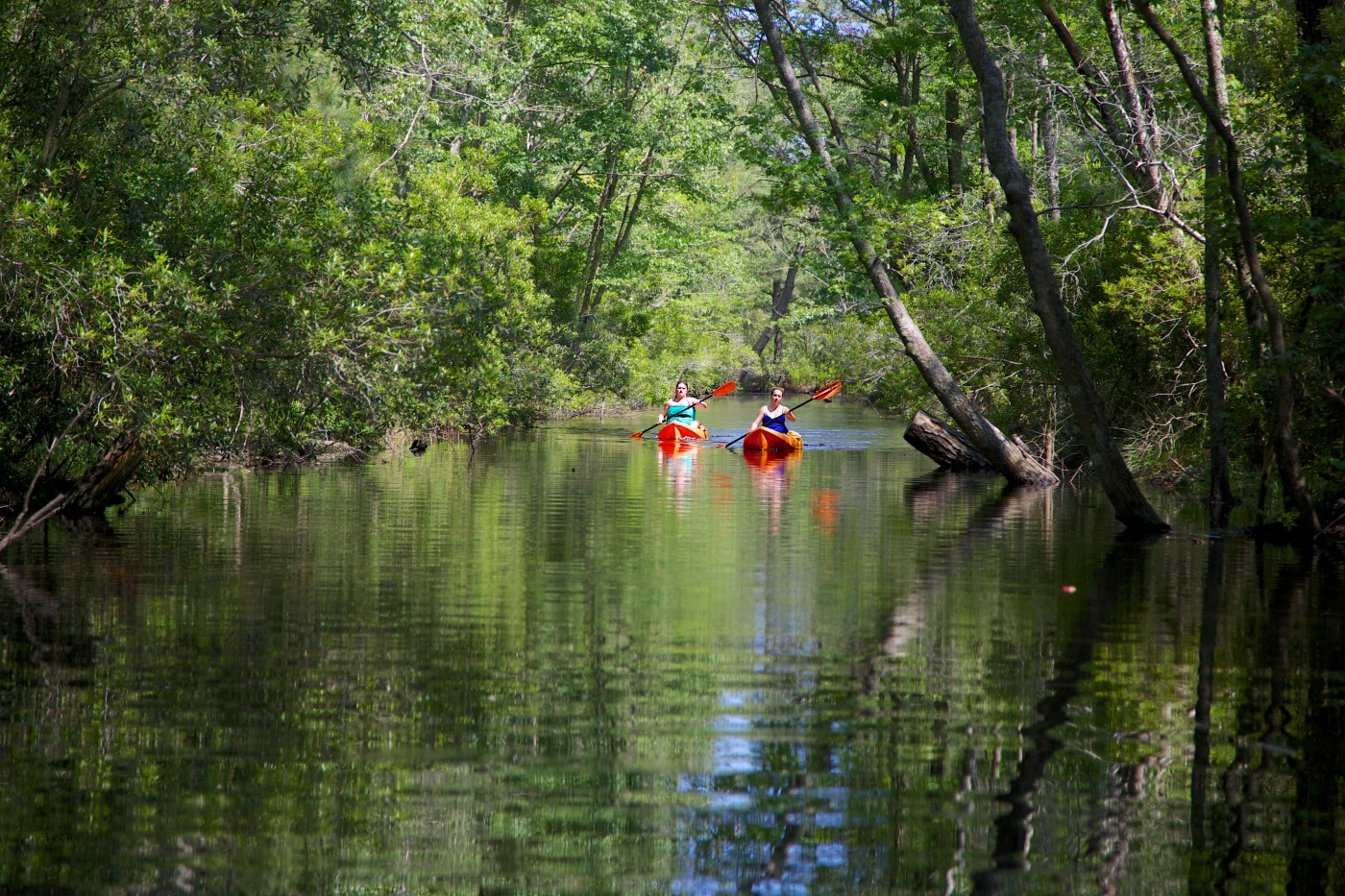 Kayaks and canoes are available to rent. Explore the area!