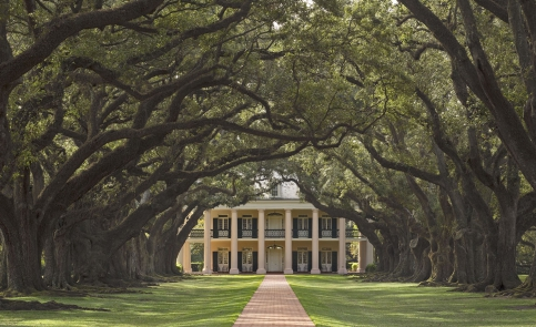 Louisiana and Mississippi: A Road Trip through History - Plantation Country