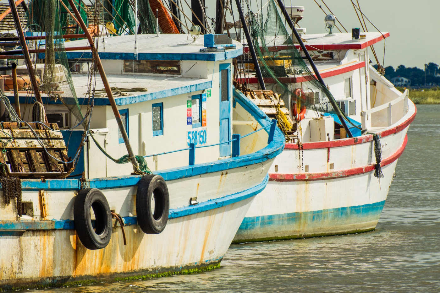 Charleston's fishing boats bring in some of the freshest local seafood you can find!