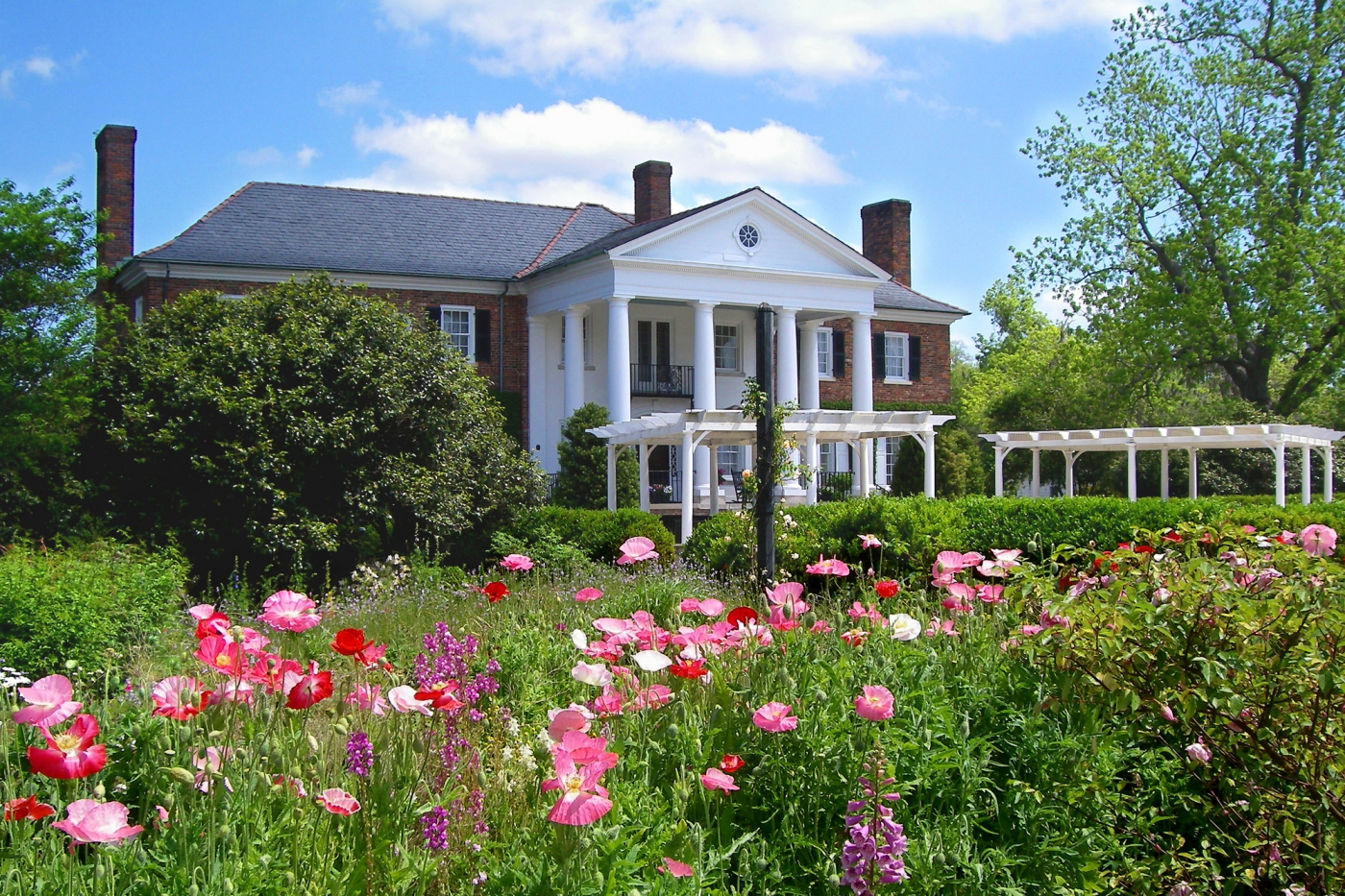 Enjoy endless photo opportunities at the historic Boone Hall Plantation.
