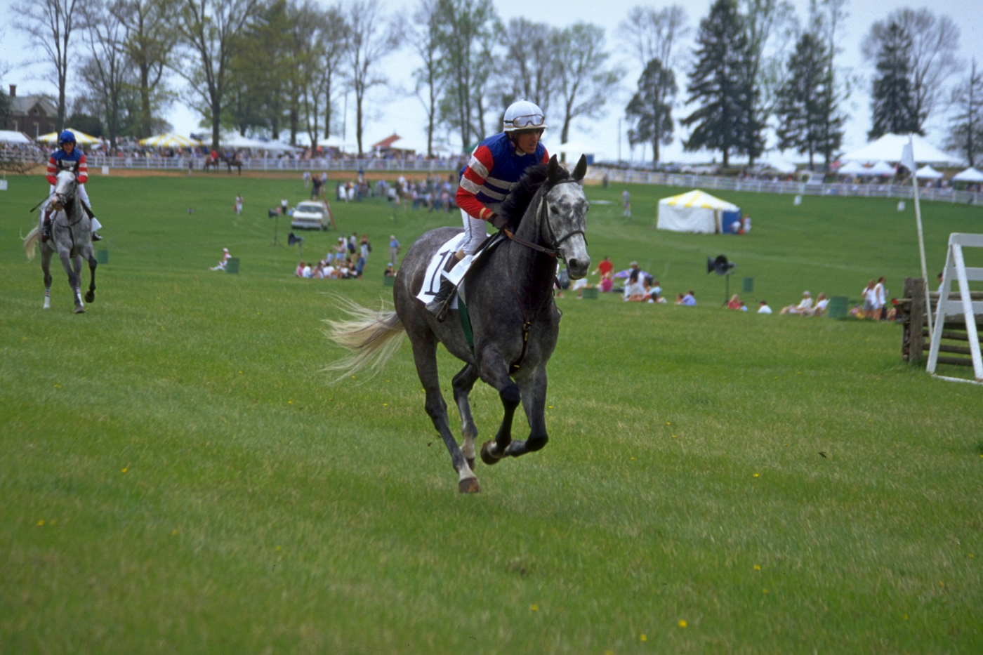 Steeplechase racing at The Plains' Great Meadow in  Loudoun County. Photo: Loudoun Dept. of Economic Development