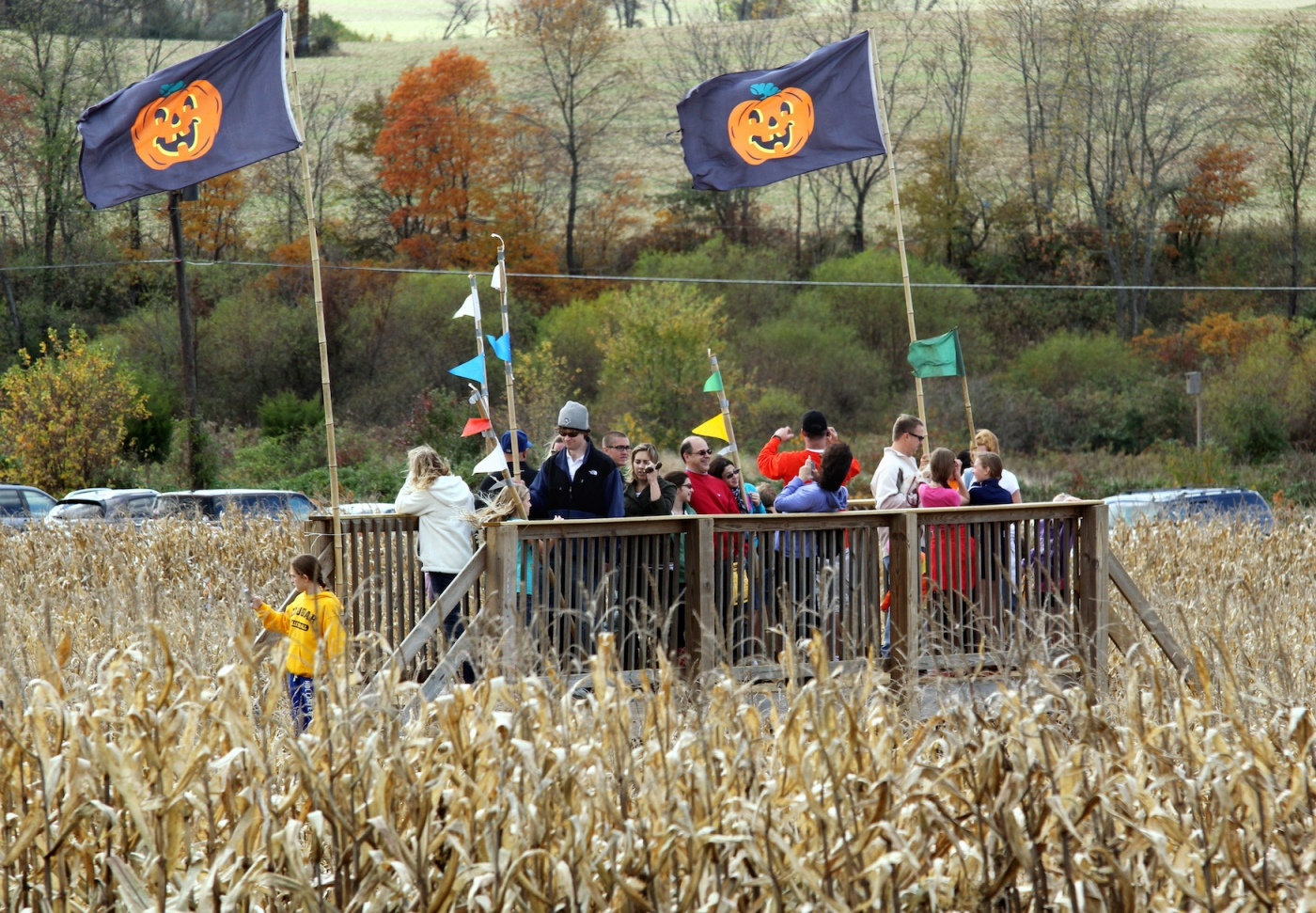 Corn Maze in the Plains - The Plains, Virginia