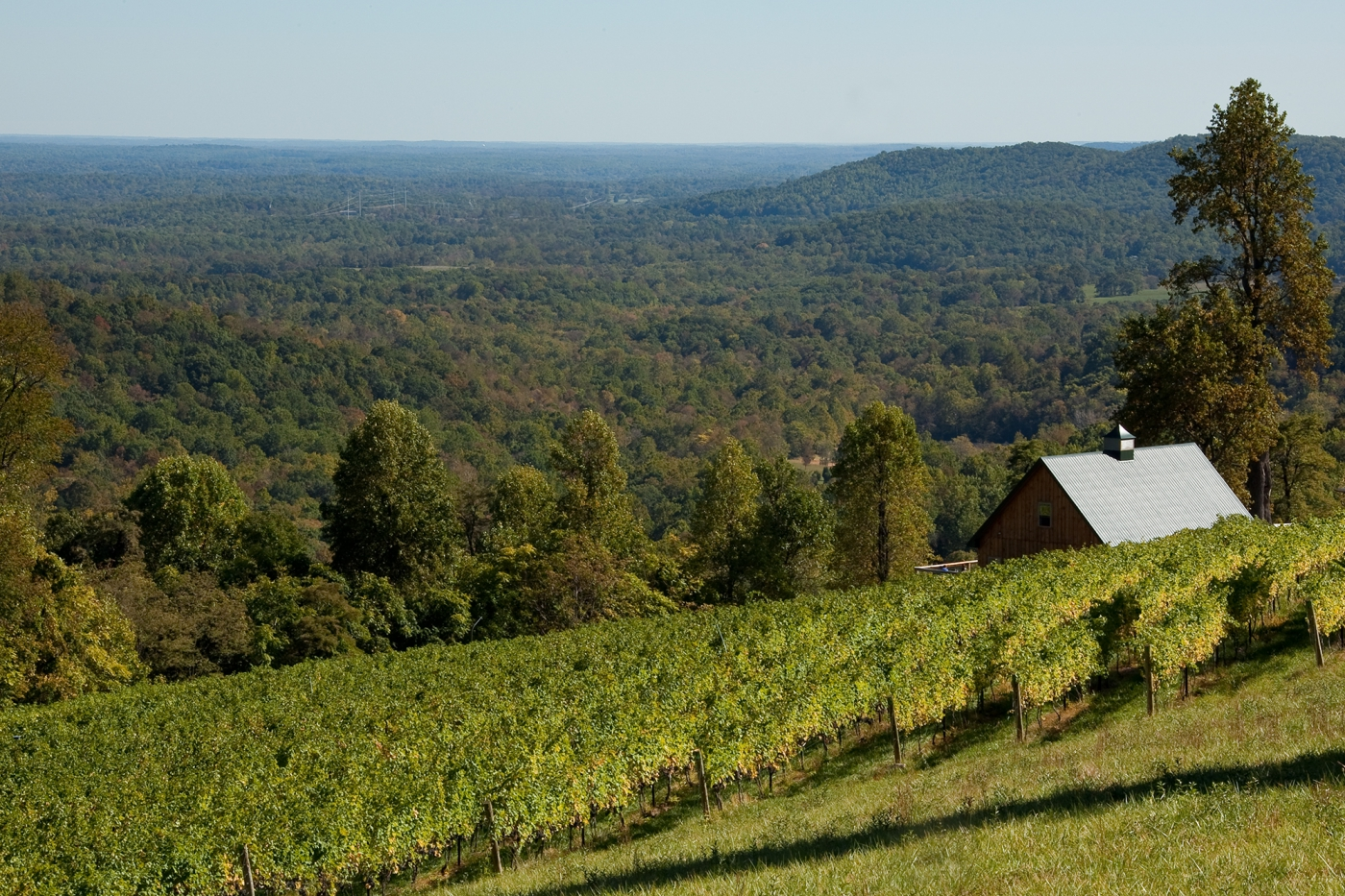 Scenic Front Royal, Chester Gap Cellars. Photo: ©Virginia Tourism Corporation