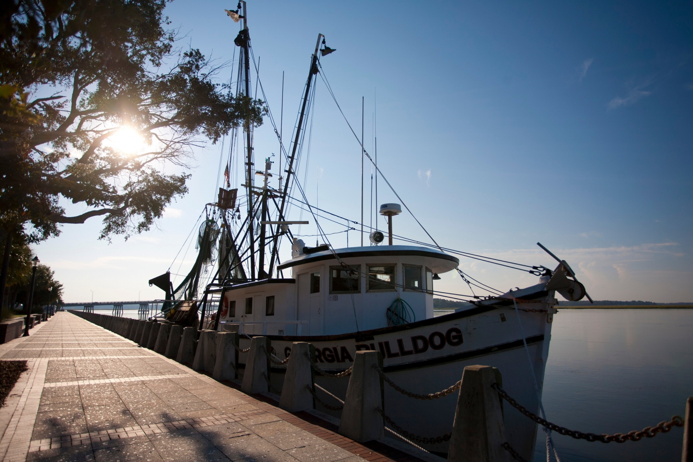 For fresh seafood all year long, South Carolina is just right!