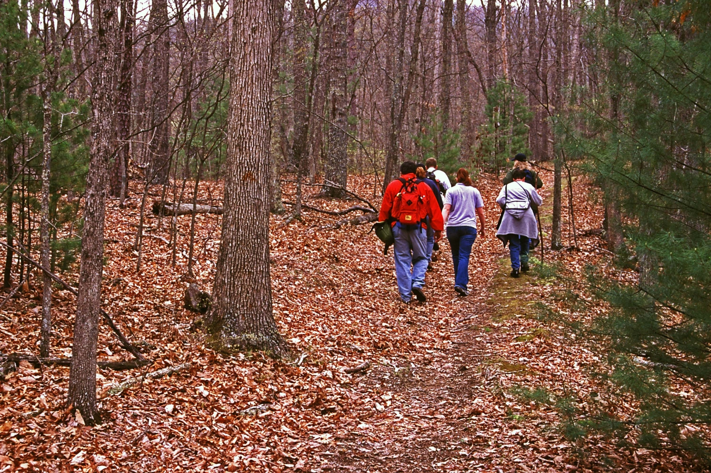Greenbrier State Forest provides over 5,100 acres of heavily forested, mountainous terrain for outdoor recreation