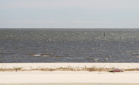 Get a pizza to-go and enjoy a beach picnic on the beautiful coastline of Gulfport.