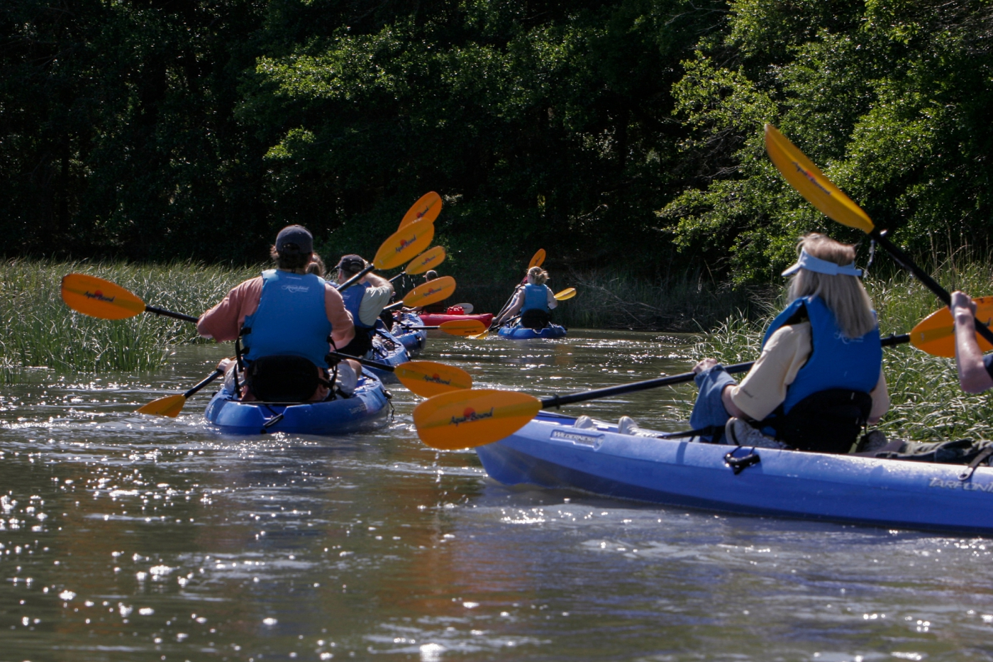 Grab a kayak and enjoy a guided tour through the waters of Kiawah Island.