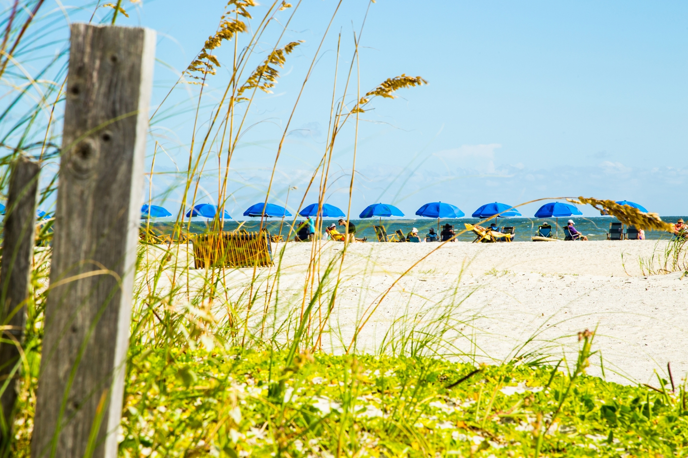 Enjoy the sun, sand and saltwater breeze on any one of South Carolina's beautiful beaches.